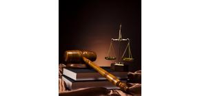 Lawyer in Adrian